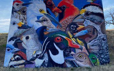 Painting the River: Nolan Mueller